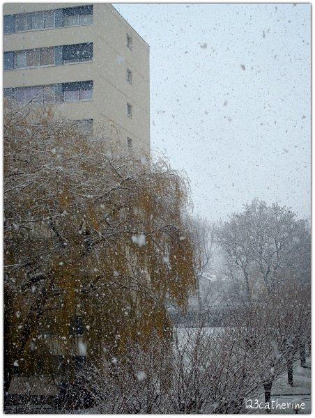Percevalière 2 déc 2012