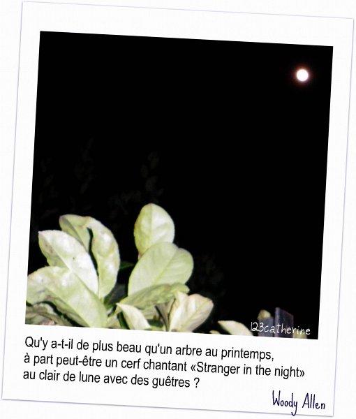 pleine lune 27 3 2013