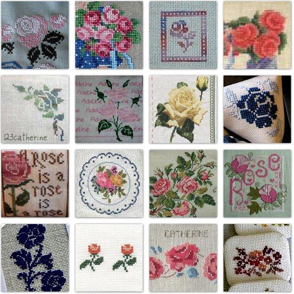 les roses de catherine