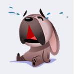 chien pleure