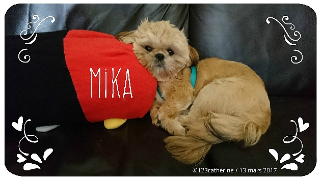 2017-03-13 mika