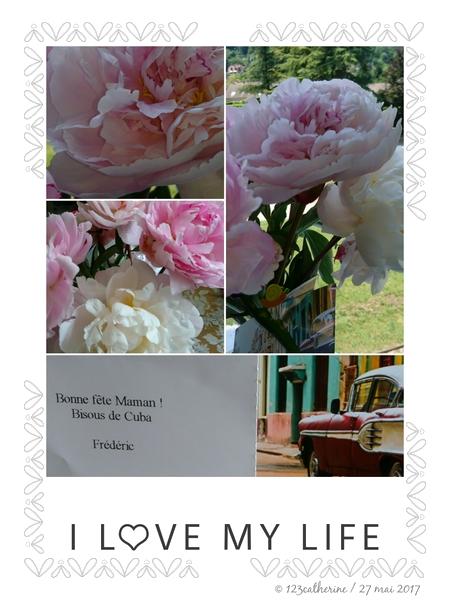 2017-05-27 bouquet frédéric