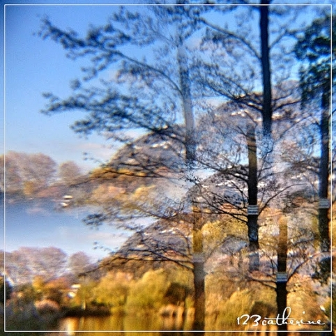 Fotor_151082705377356