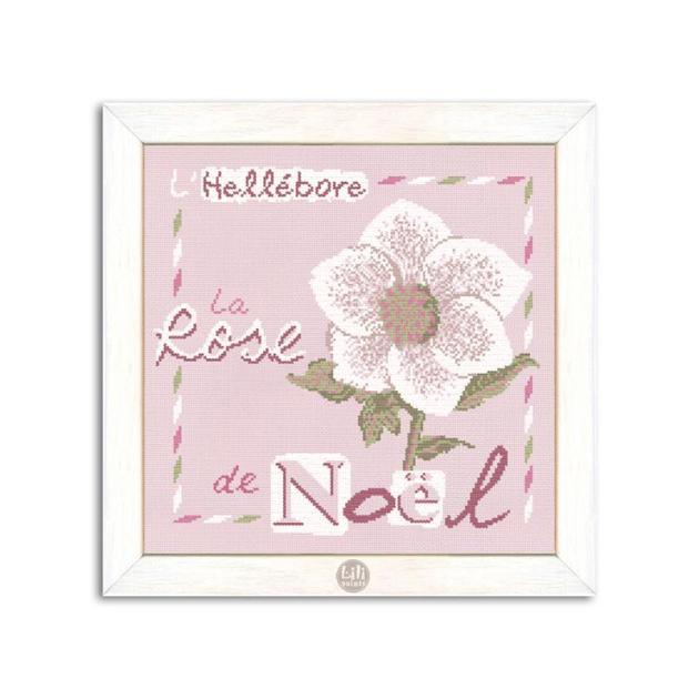 la-rose-de-noel-l